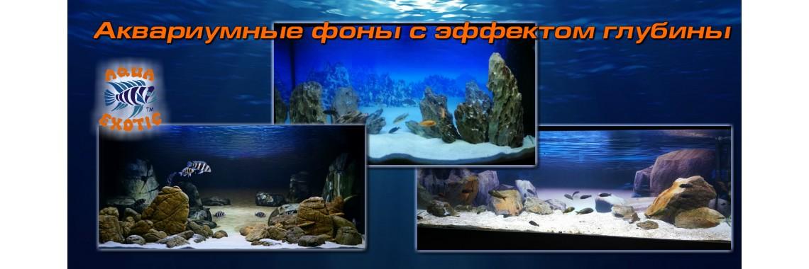 аквариумные  фоны